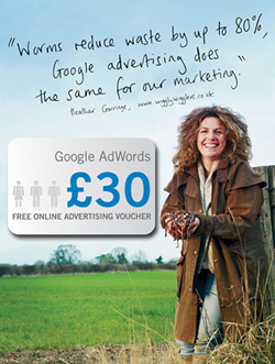 Free Google Adwords Voucher